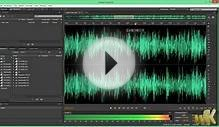 Adobe Audition CC, Configurar zoom, editor, dispositivos