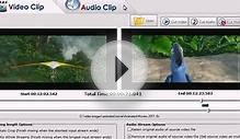 Mixing audio and video software
