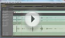 Roundtrip Audio Editing Workflow: Adobe Premiere Pro and